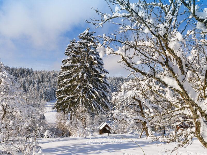 Winterfoto mit Hütte, blauem Himmel und viel Schnee